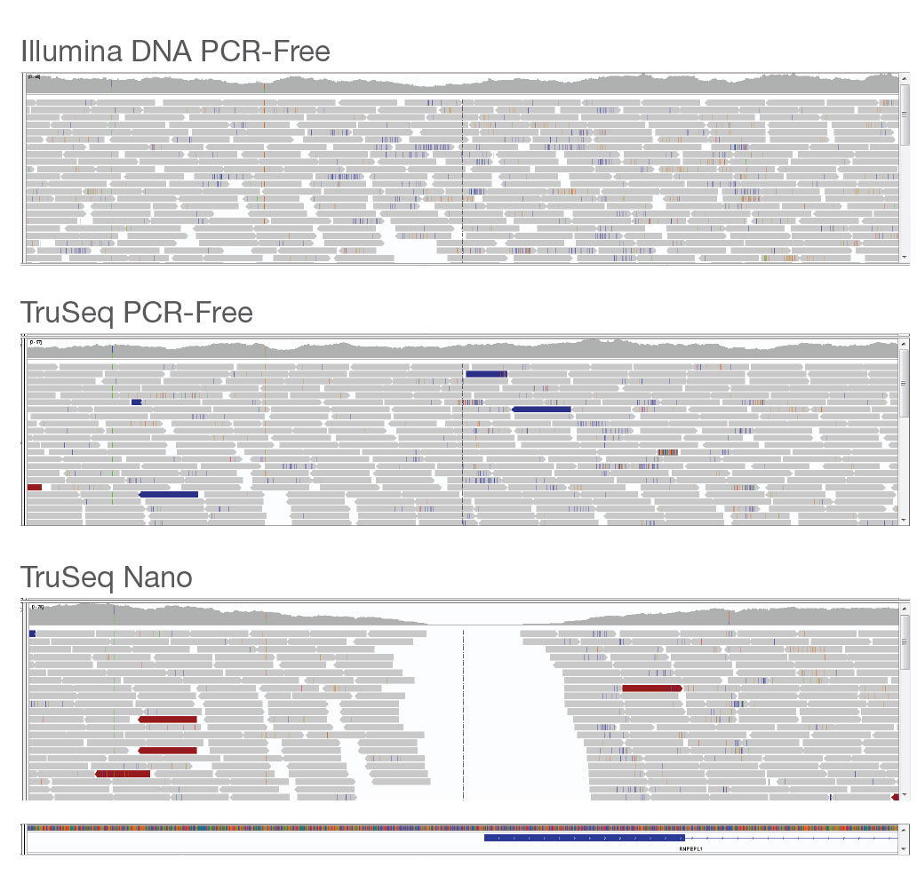 Illumina DNA PCR-Free coverage uniformity