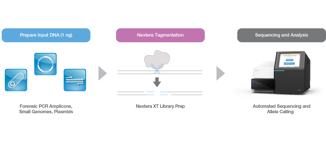 Nextera XT Library Preparation Workflow