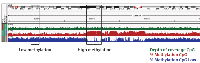 Sensitivity detects regions of high and low methylation across genome
