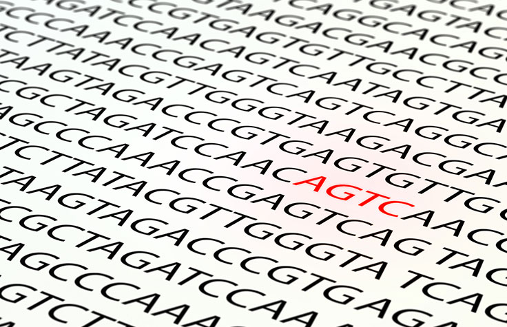 Mitochondrial sequencing